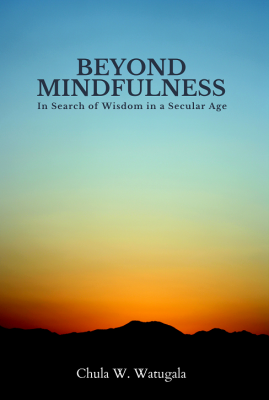 Beyond Mindfulness Paperback Cover 3 small.png